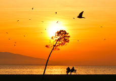 Young couple sitting on a bench near seashore at sunset. Sun between clouds and birds flying on the sea, silhouette. Stock Photos