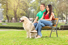 Young couple sitting in park with a dog. On a wooden bench Stock Photography