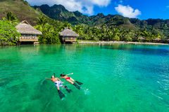 Young couple snorkeling over reef next to resort on a tropical i Royalty Free Stock Photo