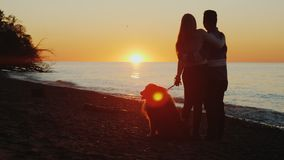 A young couple with a sob will admire the beautiful sunset over Lake Ontario. Chinese man and Caucasian woman stock photo