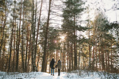 Young couple standing alone in winter forest Royalty Free Stock Photography