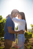 Young couple standing face to face at vineyard against sky Royalty Free Stock Photos