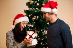 A young couple standing in front of the Christmas tree and givin Royalty Free Stock Image