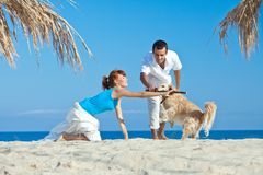 Young couple at sea side playing with their dog. Young couple, summertime, sea side, happy games with their dog Royalty Free Stock Images
