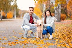 Young couple with their dog. In park Royalty Free Stock Photography