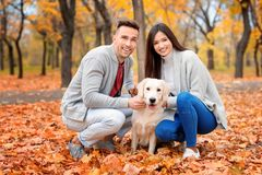 Young couple with their dog. In park Royalty Free Stock Image