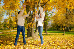 Young couple throwing autumn leaves Stock Image
