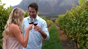 Young couple toasting with red wine in slow motion. In the grape fields stock video footage