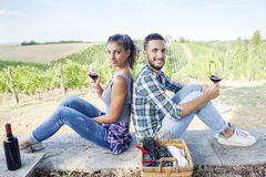 Young couple toasting in a vineyard Stock Images