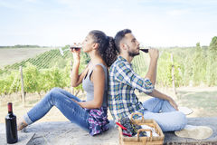 Young couple toasting in a vineyard Royalty Free Stock Images