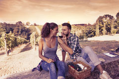 Young couple toasting in a vineyard Royalty Free Stock Photography