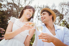 Young couple toasting a wine glass Stock Photography