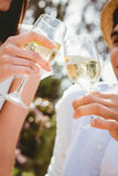 Young couple toasting a wine glass Royalty Free Stock Images