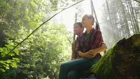A young couple of tourists rest in the woods in a picturesque place. They are illuminated by the rays of the sun. Sit. Next to a log. HD video stock footage