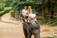 Young couple tourists are riding on elephants through the jungle Stock Images