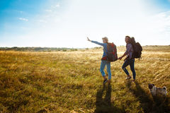 Young couple of travelers walking in field with pug dog. Young beautiful couple of travelers with backpacks smiling, walking in field with pug dog. Copy space Stock Photo