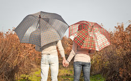 Young couple under an umbrella in the  forest Royalty Free Stock Photography