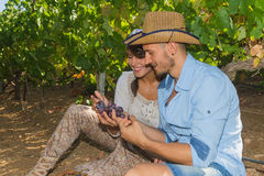 Young couple, vine growers, in the vineyard. Royalty Free Stock Photos