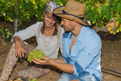 Young couple, vine growers, in the vineyard. Stock Images