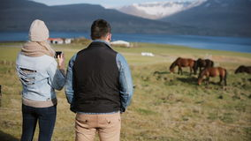 Young couple visiting the farm to choosing animal. Woman taking pictures of beautiful Icelandic horses on a field. Scenic landscape of mountains and sea stock footage