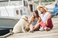 Young couple on a walk in the Harbor with a dog Stock Images