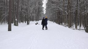 Young couple walk in snow covered tree park at winter time. 4K. Happy young couple walk in white snow covered tree park at winter time. Freetime, leisure stock footage
