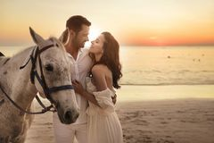 Young Couple Walking A Majestic Horse - Seaside Landscape Royalty Free Stock Images