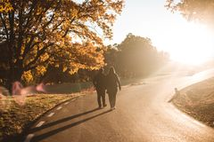 Free Young Couple Walking Along Asphalt Road In Colorful Autumn Beech And Oaks Forest. Autumn Road In Mountains. Love And Nature Royalty Free Stock Images - 159980319