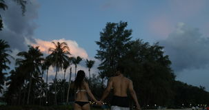 Young Couple Walking On Beach In Twilight Holding Hands Back Rear View Of Tourists Man And Woman Together On Seaside stock footage