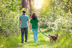 Young couple walking with dog in the forest royalty free stock photography