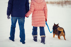 Young couple walking with dog Royalty Free Stock Photography
