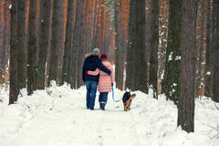 Young couple walking with dog. Young couple in love with dog walking in the snowy forest back to camera royalty free stock photos