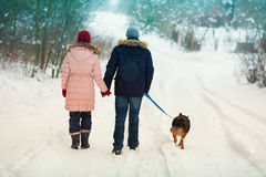 Young couple walking with a dog in winter royalty free stock photo