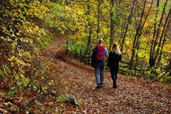 Young couple walking on a forest path in autumn. royalty free stock photos