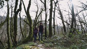 A young couple are walking holding hands in the fairytale forest, a front view stock video footage