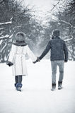 Young couple walking in a park Royalty Free Stock Photos