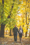 Young couple walking in the park Stock Images