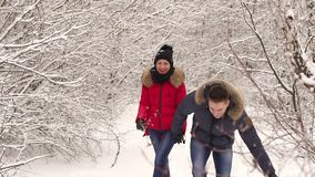 Young couple walking in a park. Winter season. Loving couple walking in winter christmas park and smiling. The snowfall stock video footage