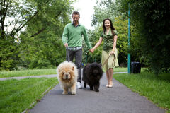 Young couple walking with pet dogs Stock Photo