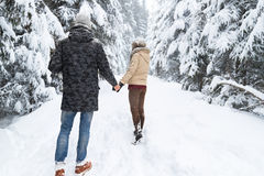 Young Couple Walking In Snow Forest Outdoor Man And Woman Holding Hands Back View Stock Image