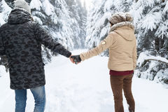 Young Couple Walking In Snow Forest Outdoor Man And Woman Holding Hands Back View Royalty Free Stock Image