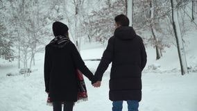 Young couple walking in winter park covered with snow holding hands. Winter outdoor leisure of happy loving couple. Back stock video
