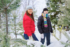 Young couple in winter forest outdoor Stock Photography