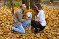 Young Couple With A Dog In The Autumn Forest Stock Photos