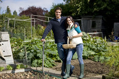 A young couple working together on an allotment Royalty Free Stock Photo
