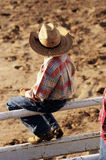Young Cowboy. A young cowboy watches the rodeo action Stock Image