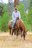 Young cowboy. Riding his horse in the field royalty free stock photography