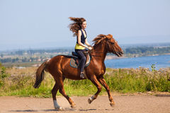Young cowgirl on brown horse. Young cowgirl gallop on brown horse Royalty Free Stock Photos