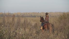 Young cowgirl at brown horse. Beautiful woman riding horse at sunrise in field. stock video