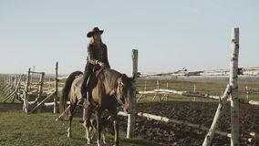 Young cowgirl at brown horse. Beautiful woman riding horse with dog along fence stock footage